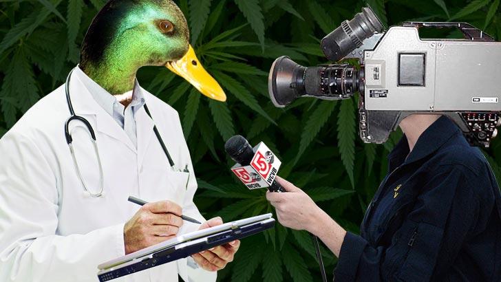 BT_MarijuanaQuacks_728